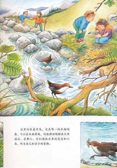河流图画简笔画