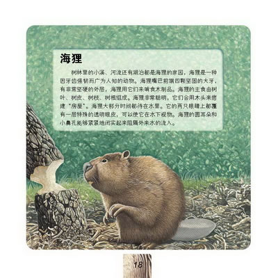 在上海借阅绘本《我能读懂动物的脸--森林动物》优